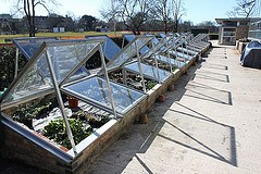 cold frame hot house example