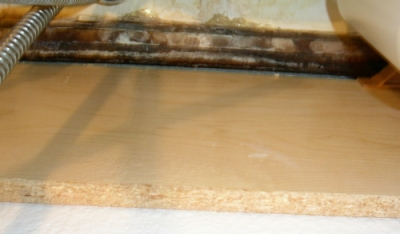 mold growing under counter top