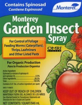 Monterey garden insect spray with spinosad to kill ants.