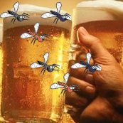 mosquitos attracted to beer drinkers