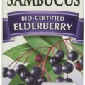 Does Black Elderberry Syrup Really Fight Cold and Flu Viruses?